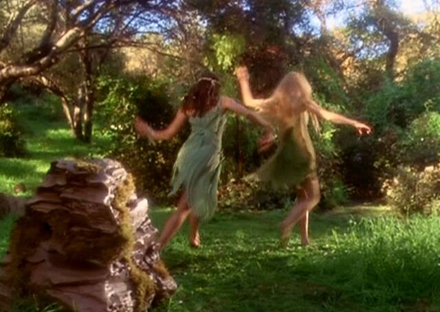 File:Daisy and miranda frolocking away from the spring.JPG