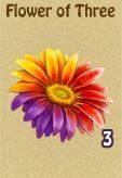 Flower of 3