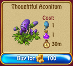 Thoughtful Aconitum