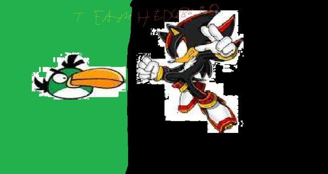File:TEAM HEDGEBIRD LOGO!.jpg