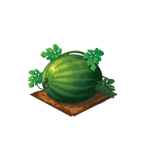 File:Crop-Watermelon.png