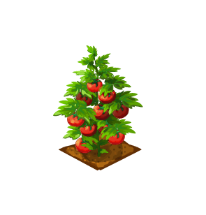 File:Crop-Tomato.png