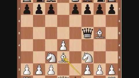 Chess Basics- Queen Overview
