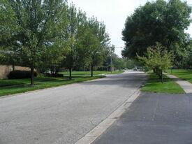 Munster - Camellia Drive