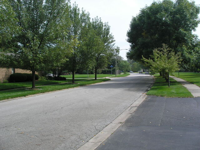 File:Munster - Camellia Drive.JPG