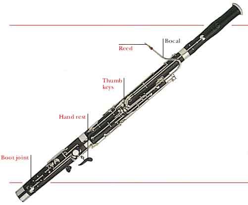 File:Bassoon2.jpg