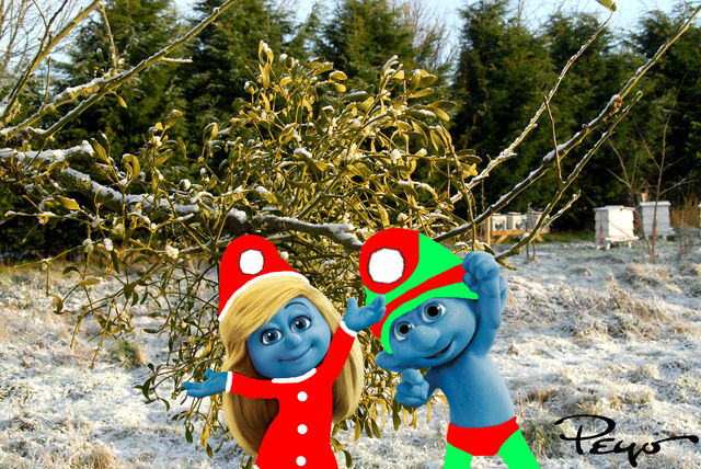 File:Grouchy sees Clumsy and Smurfette underneath the Mistletoe.jpg