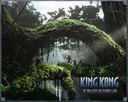Kkong2005