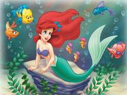 Ariel-Friends-the-little-mermaid-223086 800 600