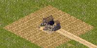 Hemp Farm