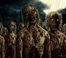 Zombie Crisis and The Survivors Wiki