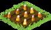 Candy Corn Seedling