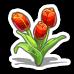 Tulips-icon