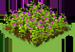 Alfalfa-icon