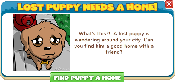 Lost puppy needs a home