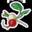 Turnips 2-icon