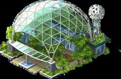 Geodesic Rainforest-SW