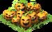 Jack-o-Lantern Fruit