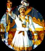 PrithviNarayanLS