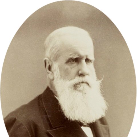 Photograph of Pedro II, taken by Alphonse Liébert (c. 1887)