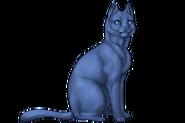 Cat Alpha