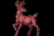 Deer Alpha