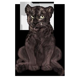 File:Item panther cub.png