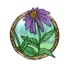 Item Purple coneflower