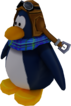 Sled Racer Penguin Model Blue
