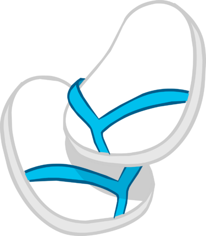 File:Blue & White Flip Flops icon.png