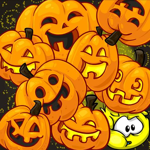 File:Pumpkin Background photo.png
