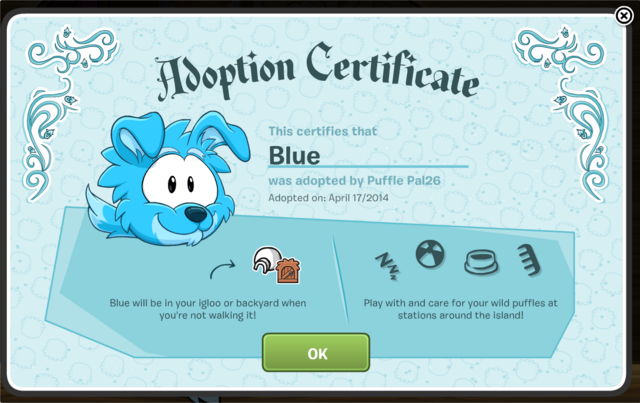 File:Dog Poofle Cert.png
