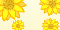 Sunflowers Background