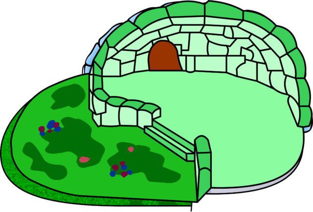 File:Green Clover Igloo icon glitch.png
