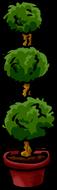 Poodleplant