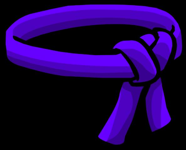 File:Purple Ninja Belt icon.png