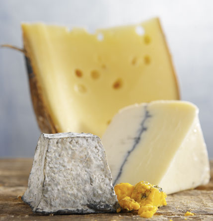 File:Cheese1.jpg