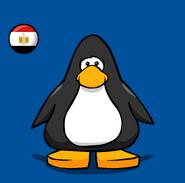 Egypt Flag on a Player Card