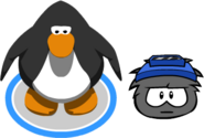 Club Penguin flare