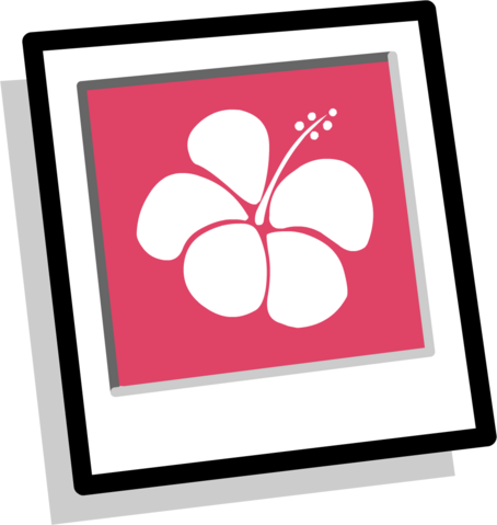 File:Pink Hawaiian Background Inventory.PNG
