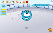 Puffle Interface full stats June 2013 Blue Puffle
