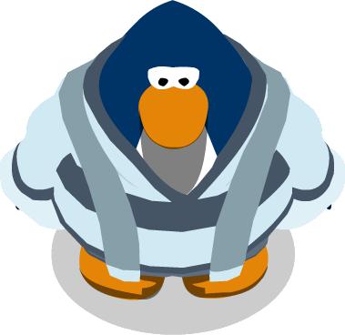 File:Snow Peak Robes In-Game.png
