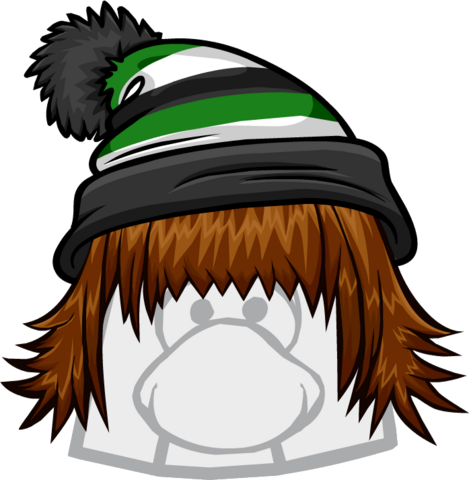 File:TheBadHairDay.png
