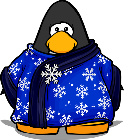 File:Blizzard Wizard Robe from a Player Card.PNG