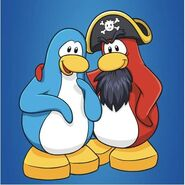 Rockhopper with a light blue penguin