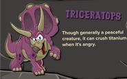 Purple Triceratops Description