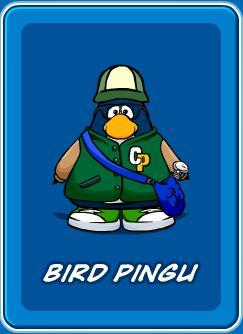 File:Birdping.jpg
