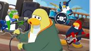 Penguin band at anchors