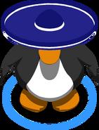 Starlit Sombrero ingame