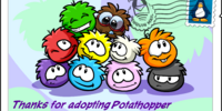Adoption postcard